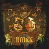 Brikk by Body Bag Ben