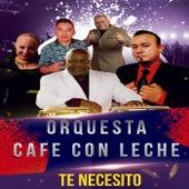 Te Necesito by Orquesta Cafe Con Leche