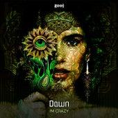I'm Crazy by Dawn