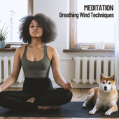 Meditation: Breathing Wind Techniques by Spa Music (1)