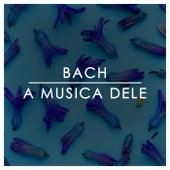 Bach: A Musica Dele de Johann Sebastian Bach