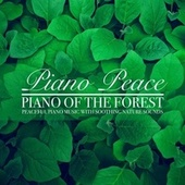 Piano of the Forest by Piano Peace