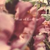 Year of Love de Beta Radio