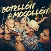 Botellón a Mogollón de Various Artists