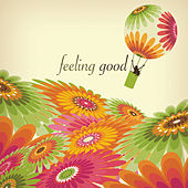 Feeling Good von Various Artists