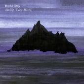 Skellig (Calm Mixes) by David Gray