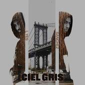 Ciel Gris by Sanchez