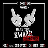 Dans ton kwaah (feat. Seth Gueko, Dosseh, Lino) [Remix] de Niro