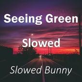 Seeing Green Slowed (Remix) de Slowed Bunny