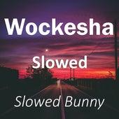 Wockesha Slowed (Remix) by Slowed Bunny