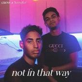 Not in That Way (Cover) de Crøss
