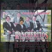 Chiquilla Cariñosa de Los Rancheritos Del Topo Chico