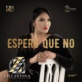 Espero Que No by Lili Zetina