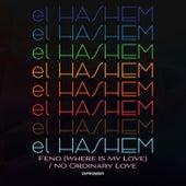 Feno (Where is My Love) / No Ordinary Love de Hashem
