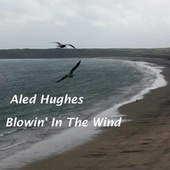 Blowin' in the Wind by Aled Hughes