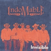 Invisible von Indomable