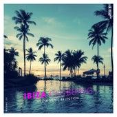 Ibiza Clubbing, Vol. 25 von Various Artists