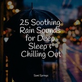 25 Soothing Rain Sounds for Deep Sleep & Chilling Out von Deep Sleep (2)