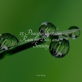 25 Peaceful Soothing Rain for Bliss and Serenity by Zen Meditate