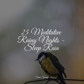 25 Meditative Rainy Nights - Sleep Rain by Best Relaxing SPA Music