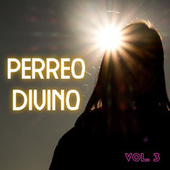 Perreo Divino Vol. 3 by Various Artists