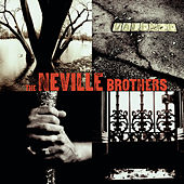 Valence Street de The Neville Brothers