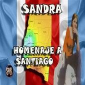 Homenaje a Santiago by Sandra