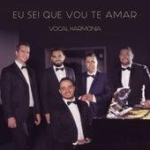 Eu Sei Que Vou Te Amar by Vocal Harmonia