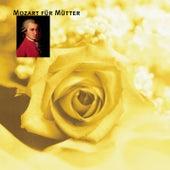 Mozart für Mütter de Various Artists