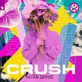 Crush von Avian Grays
