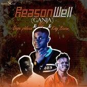 Reason Well (Ganja) by Dopephlexx