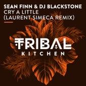 Cry a Little (Laurent Simeca Remix) von Sean Finn