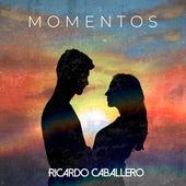 Momentos (Cover) by Ricardo Caballero