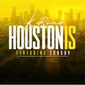 Houston Is de K-Rino