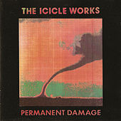 Permanent Damage von The Icicle Works