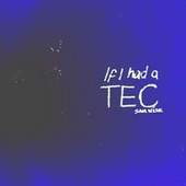 If I Had a Tec by Samwise