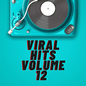 Viral Hits Volume 12 by Various Artists