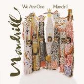 We Are One de Mandrill