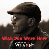 Wish You Were Here di Wilson Viturino