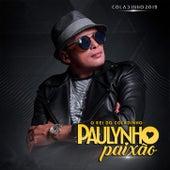 Coladinho 2019 by Paulynho Paixão