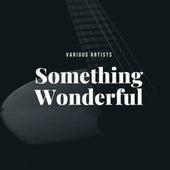 Something Wonderful fra Various Artists