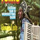 É assim que o nordestino quer de Renato Leite