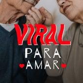 Viral Pra Amar von Various Artists