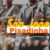 São João Pisadinha de Various Artists