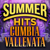 Summer Hits Cumbia Vallenata by Various Artists