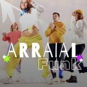 Arraial Funk de Various Artists