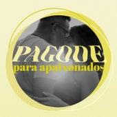 Pagode Para Apaixonados by Various Artists