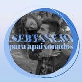Sertanejo Para Apaixonados von Various Artists