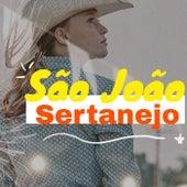 São João Sertanejo von Various Artists