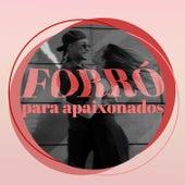 Forró Para Apaixonados de Various Artists